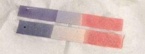 Litmus Paper Transition Colors