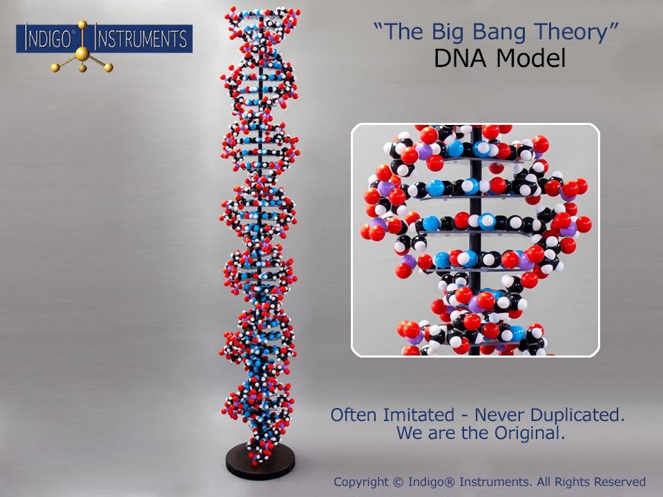 DNA New Improved Big Bang Theory Model