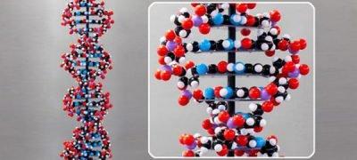 Big Bang Theory DNA Molecule