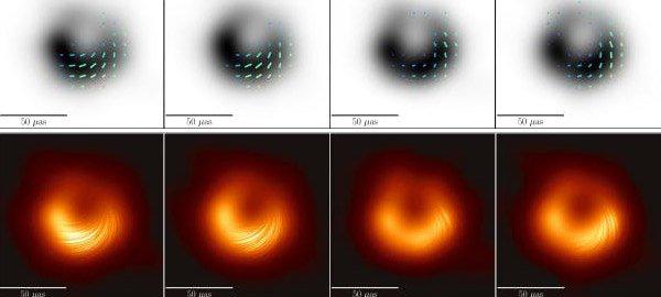 Black Hole Magnetic Field