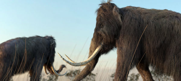 Mammoth Brought back to Life